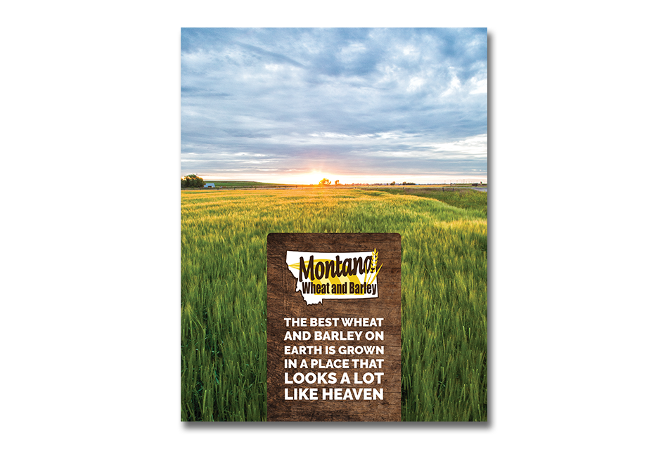 Montana Wheat and Barley Industry Book Cover_Print Materials Example_Image of Wheat Field